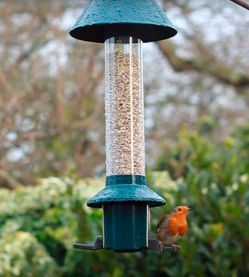 Review of Roamwild Squirrel Proof Wild Bird Feeder Roamwild PestOff