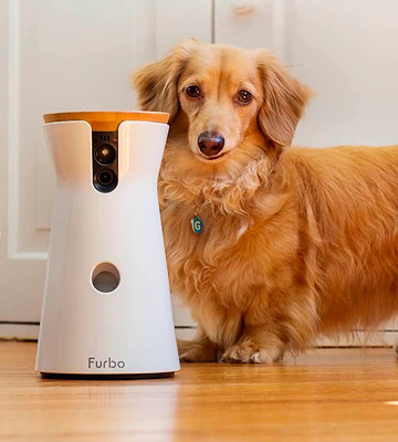 Review of Furbo 2-way Treat Tossing Dog Cam
