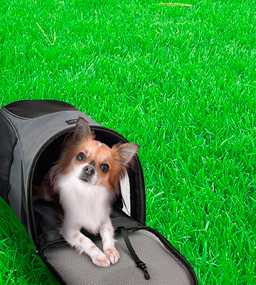 Review of Becko Large & Strengthening Expandable Foldable Pet Carrier
