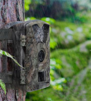 5 Best Wildlife Cameras Reviews of 2019 in the UK