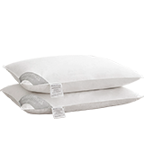 HOMEFOUCS PAIR Goose Feather and Down Pillows