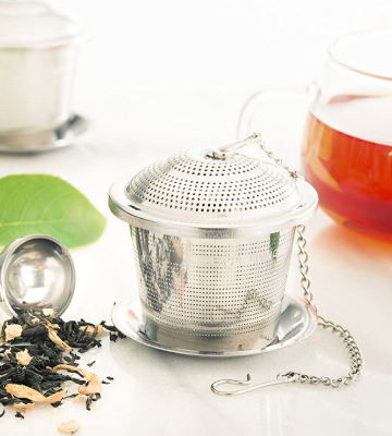 Review of Apace Set of 2 Loose Leaf Tea Infuser with Tea Scoop and Drip Tray