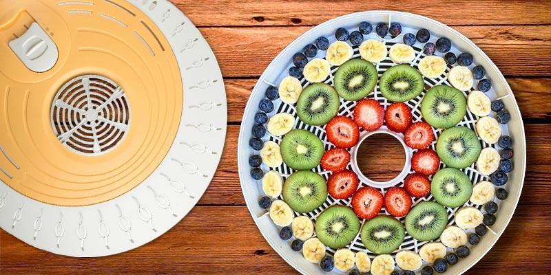 Review of Luvele Express Food Dehydrator