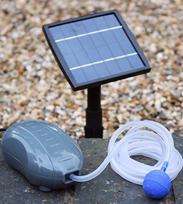 Review of PowerBee Perfect Pond Solar Power Oxygenator for Small to Medium Ponds,