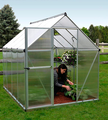 Review of Palram Mythos 6x8 ft Greenhouse