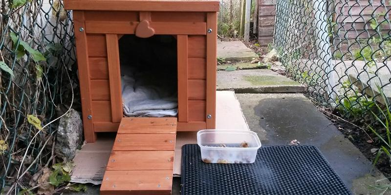 Review of VivaPet Wooden Hide Rabbit House