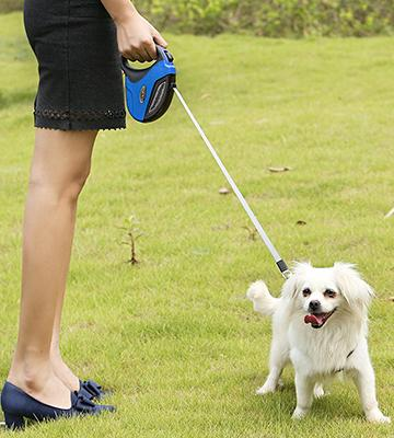 Review of GHB Extendable Retractable Dog Lead