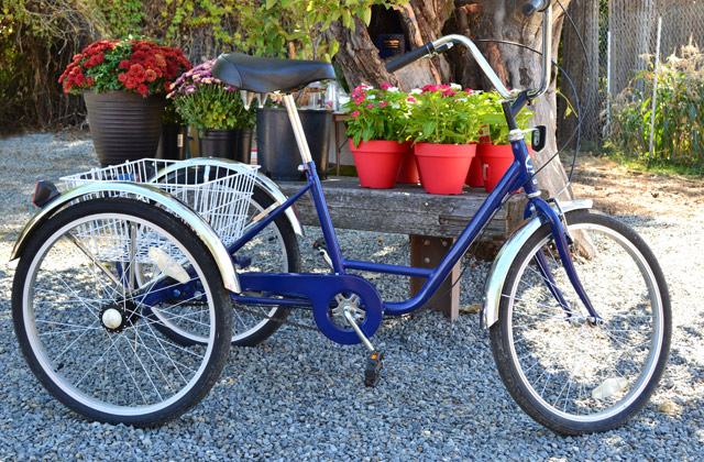 Best Adult Tricycles for Leisure Riding