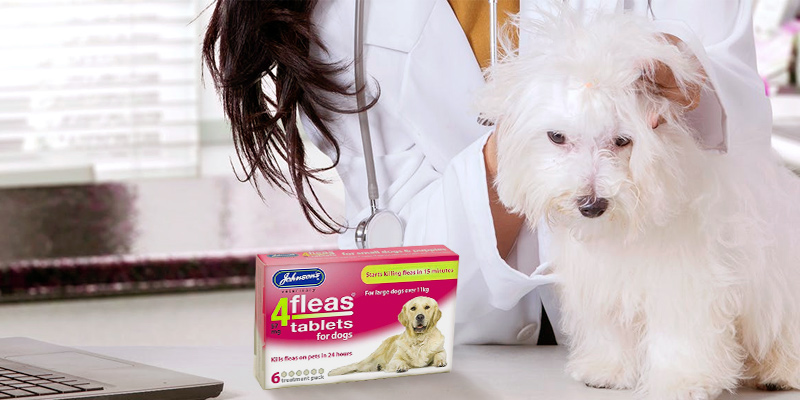Review of Johnsons Veterinary Products 4Fleas Dog Tablets