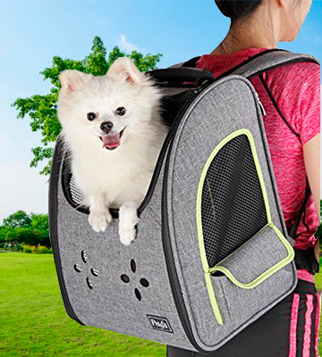 Review of Petsfit DCC1539ZC0608J Dogs Carriers Backpack