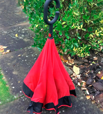 Review of TOOGE TG-FXS-001 Reversible Umbrella