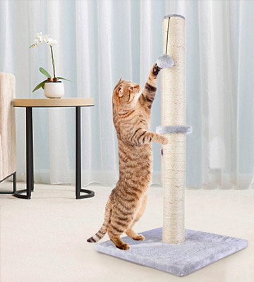Review of Dimaka 29 Tall Cat Scratching Post