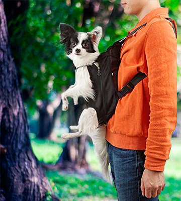 Review of NICREW PT0014 Legs Out Front-facing Dog Carrier Backpack