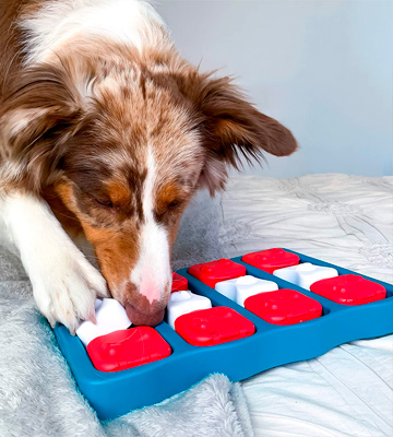 Review of Outward Hound Brick Interactive Treat Puzzle Dog Toy