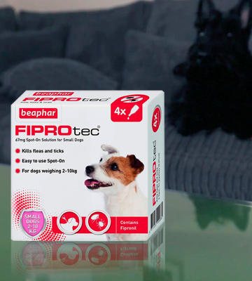 Review of Beaphar Fiprotec Spot-On for Small Dog