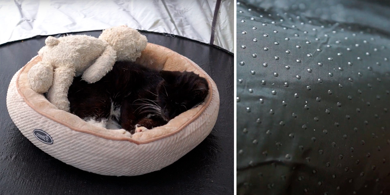 Review of Pecute Oval Washable Plush Cat Bed for Large Cats