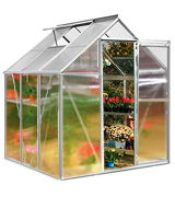 Deuba 6x6 ft Greenhouse