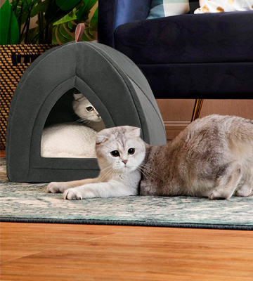 Review of Bedsure Tent Cave Bed for Cats