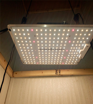 Review of Spider Farmer Newest Dimmable LED Grow Light