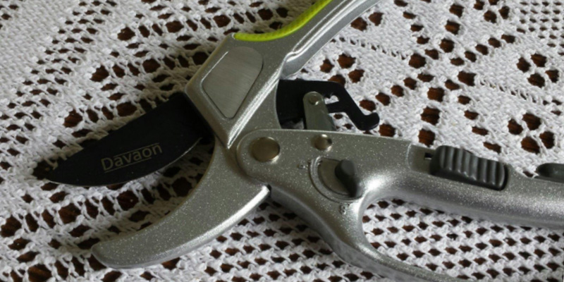 Davaon DN-3130-3B 2 in 1 Ratchet Secateurs in the use