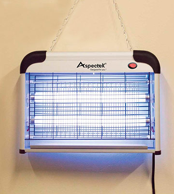 Review of Aspectek Fly and Insect Killer 20W UV light