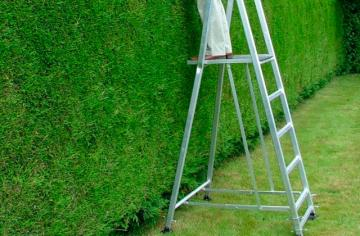 Best Step Ladders to Reach Anywhere