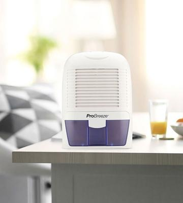 Review of Pro Breeze Dehumidifier for Damp, Mould, Moisture in Home