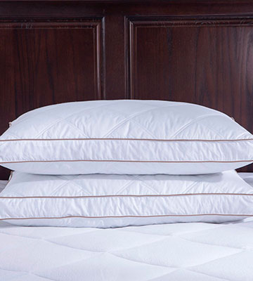 Review of puredown Pack of 2 Goose Feather Pillows for Deep Sleeping