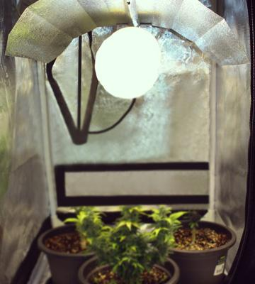 Review of Omega Grow/Flower Light Kit