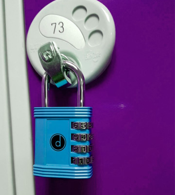 Review of Desired tools 4 Digit Combination Padlock