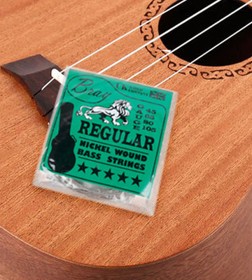Review of Bray 4 String Bass Guitar Strings