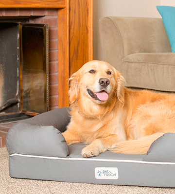 Review of PetFusion PF-IBL1 Memory Foam, Waterproof liner