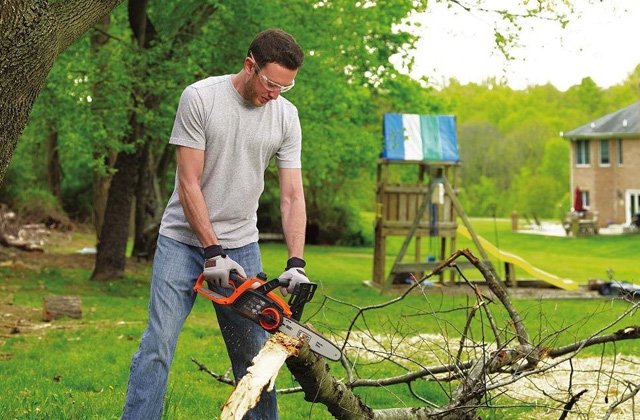 Best Gas Chainsaws for Lumberjacks and Weekend Warriors