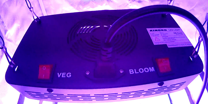 Review of KINGBO HG-GM300W-UK Dual Optical Lens LED Grow Light