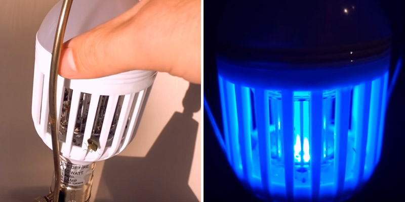 Review of Cooper Cases Bug zapper bulb LED Bug Light