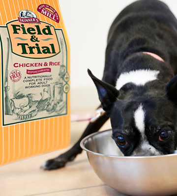 Review of Skinners Field & Trial Chicken and Rice Dog Food