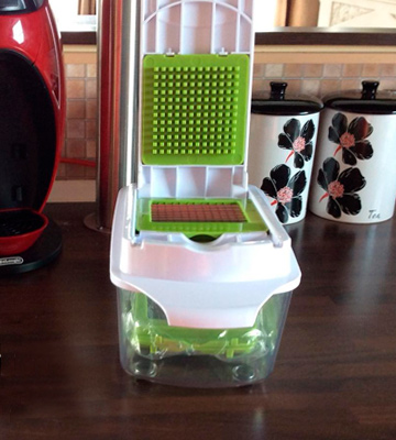 Review of Brieftons BR-QP-02 QuickPush Food Chopper