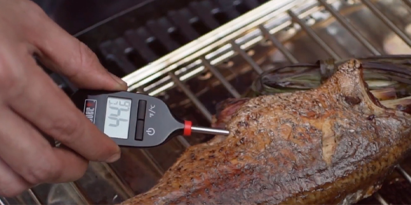 Review of Weber 6750 Instant-Read Thermometer