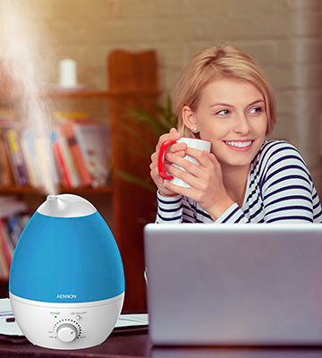 Review of Aennon Cool Mist 2.8L Ultrasonic Humidifiers