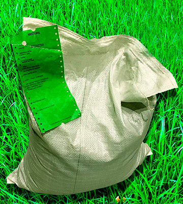 Review of GBW Grass Seed Grass Seed Covers Premium Quality Seed - Fast Growing - Hard Wearing Lawn Seed