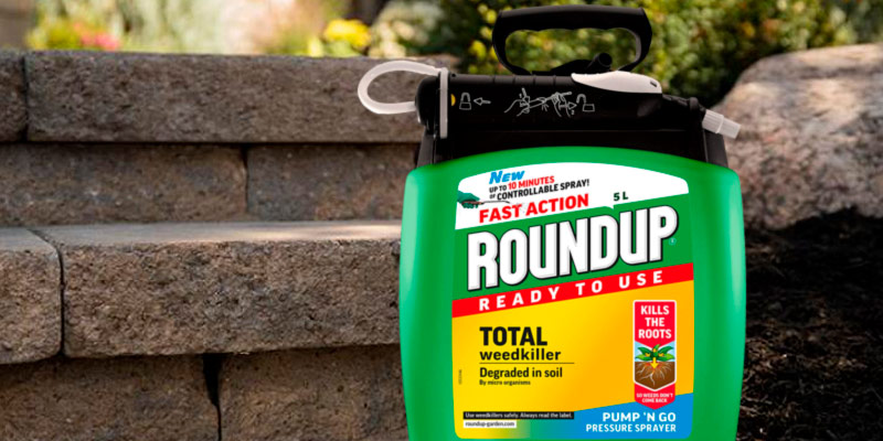 Review of Roundup Total (Pump N Go) Weed Killer
