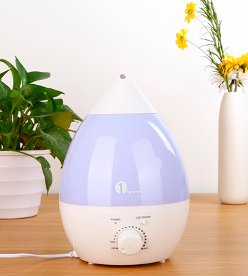 Review of 1byone 701UK Cool Mist Humidifier