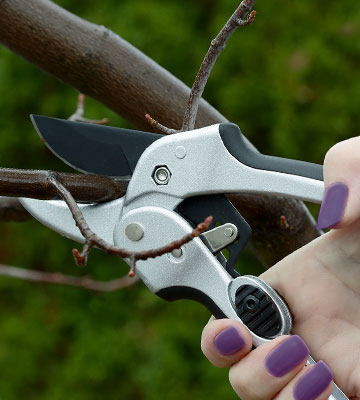 Review of Greenco Gardening RPS-Black Ratchet Secateurs