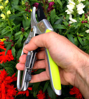 Review of Davaon DN-3130-3B 2 in 1 Ratchet Secateurs