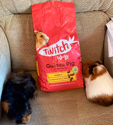 Review of Wagg 10 kg Twitch Guinea Pig