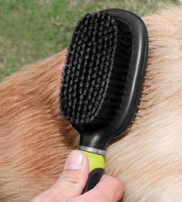 Review of Pecute 2 in 1 Pin Double Sided Pet Grooming Brush