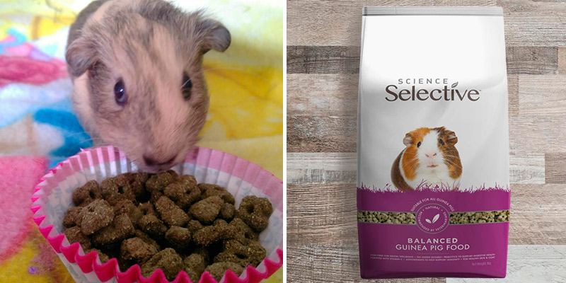 Review of Supreme 3kg Science Selective Guinea Pig Food