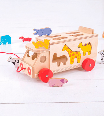 Review of Bigjigs Toys BJ300 Animal Shape Lorry