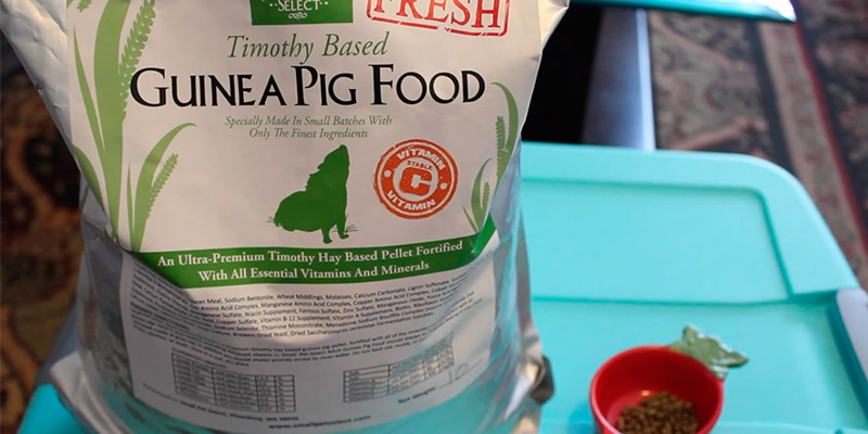Review of Small Pet Select 5-Pound Guinea Pig Food Pellets