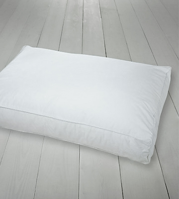 Review of Dunlopillo 101069 Serenity Deluxe Full Latex Slim Pillow, White